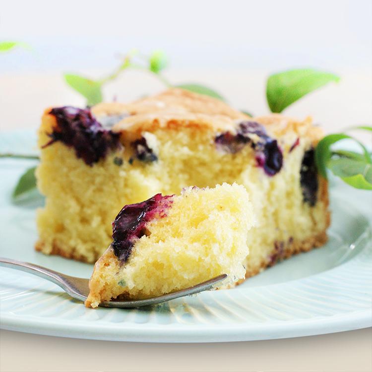 Ciasto z borówkami i polewą z białej czekolady.